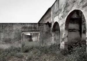 Ruinas del viejo campo de La Algaba